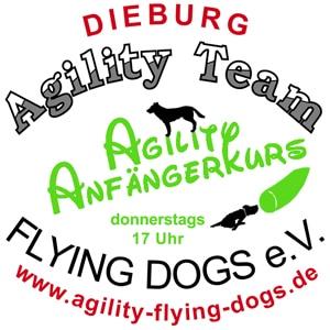 Agility Anfängerkurs @ Auf dem ATFD-Gelände
